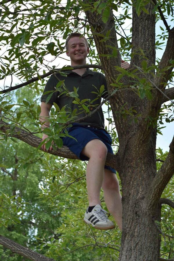 Greg In Tree